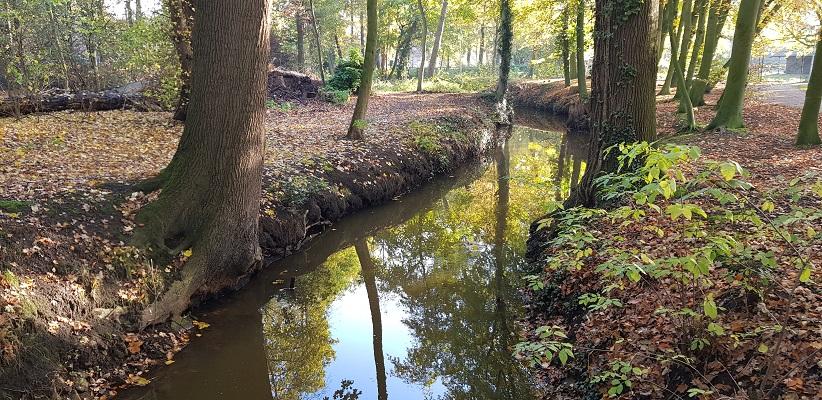 Wandeling in Deurne over het Tuinpad van mijn vader bij de Vlier