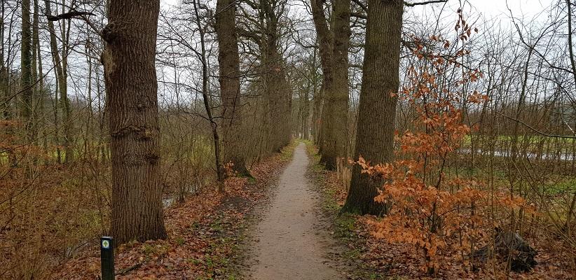 Wandeling over Trage Tocht Neerijnen op landgoed Waardenburg