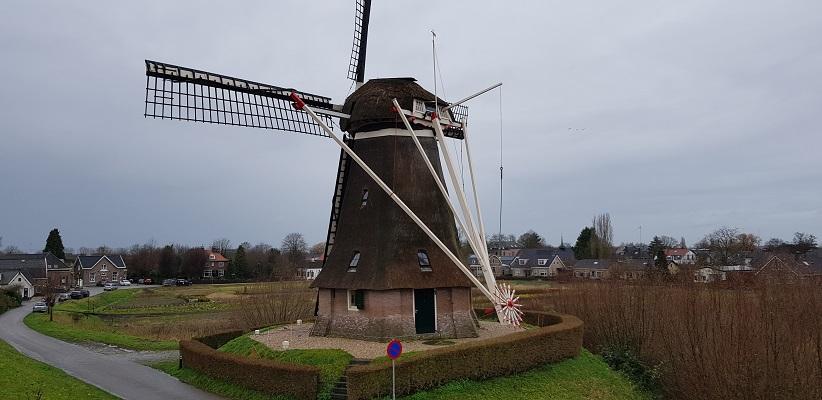 Wandeling over Trage Tocht Neerijnen bij de molen in Waardenburg
