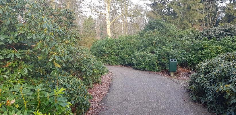Wandeling ten westen van de Amstel in Amsterdam in de Rododendronvallei in het Amstelpark