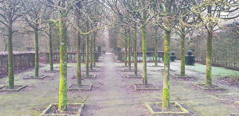 Wandeling ten westen van de Amstel in Amsterdam in het Amstepark