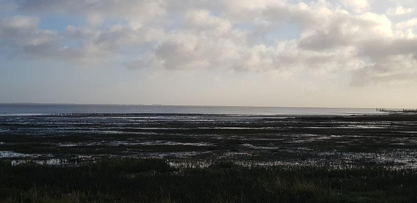 Wandeling op Schiermonnikoog van het Dorp naar de veerdam met zicht op de Waddenzee