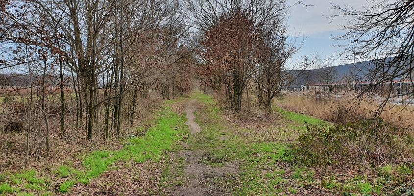 Wandeling over de mooiste zandwegen van Uden op het Duits Lijntje richting Mill