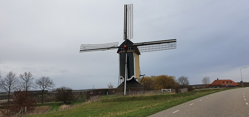 Stadswandeling Batenburg bij de molen