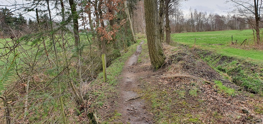 Wandeling over Trage Tocht Helenaveen
