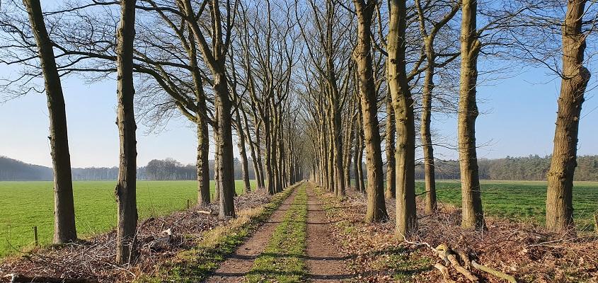 Wandeling over Trage Tocht Loenen