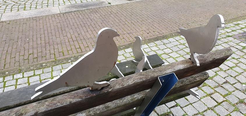 Literaire wandeling langs markante punten van A. van der Heijden in Geldrop op de markt