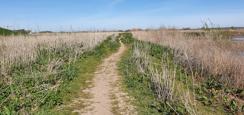 IVN-wandeling Afferdense en Deestse Waarden bij Druten