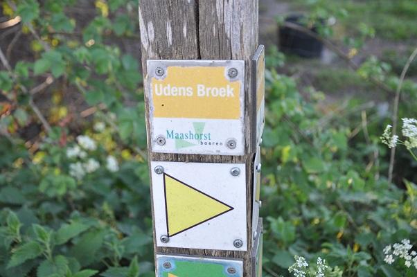 Wandeling door het Udens Broek van de Maashorstboeren
