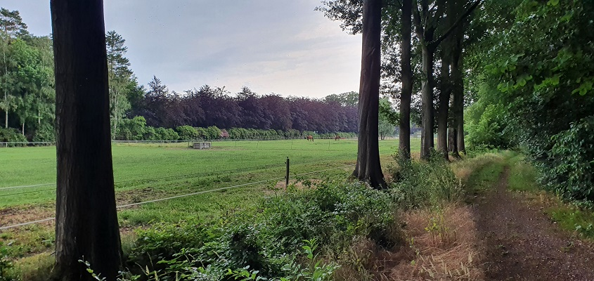 Wandeling over Trage Tocht Tilburg