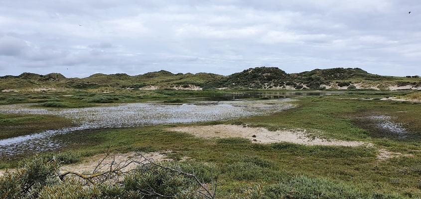 Wandeling op Terschelling van Midsland aan Zee naar West bij Eldorado