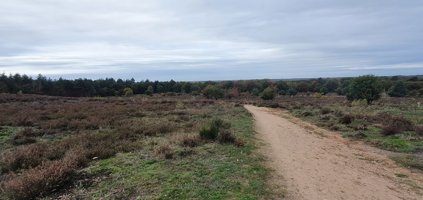 Wandeling over Geopad Mulderskop-Hooge-Hoenderberg bij een spoelzandvlakte