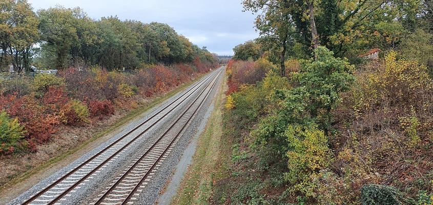 Wandeling over Geopad Mulderskop-Hooge-Hoenderberg bij spoorlijn Nijmegen-Venlo