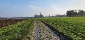 Wandeling over Trage Tocht Helmond bij de Oude Toren en bolle akkers