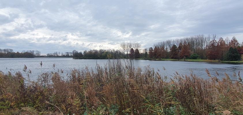 Wandeling over Trage Tocht Vijfhuizen bij het Haarlemmermeerse Bos