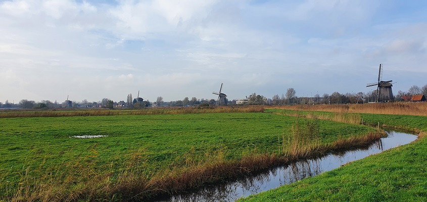 Wandeling over Westfriese Omringdijk van Ursem naar Alkmaar bij de molens van de Ouderperpolder