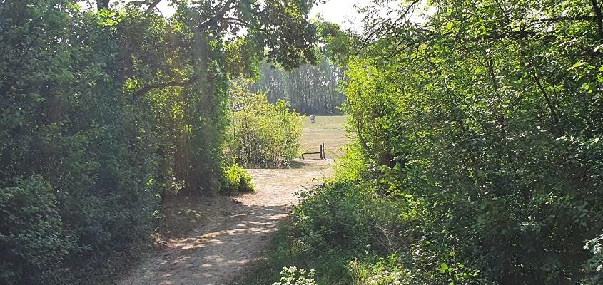 Wandeling over Trage Tocht Den Bosch bij Heinis
