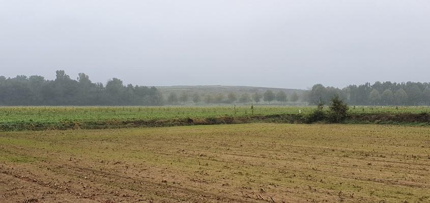 Wandeling van Doetinchem naar Ruurlo over het Achterhoekpad de Ezelsbult