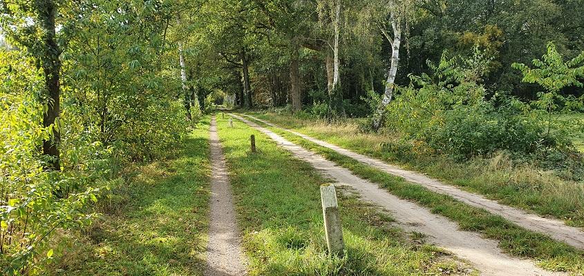 Wandeling van Lochem naar Ruurlo over Achterhoekpad