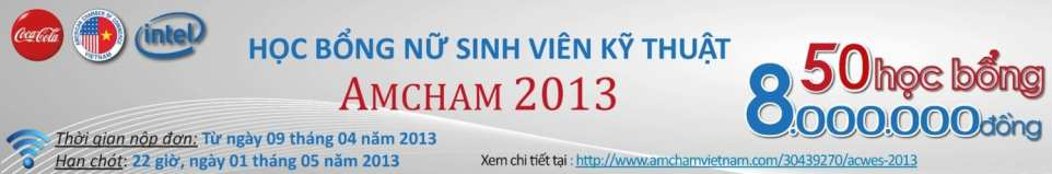 2013 AmCham Women in Engineering Scholarship Banner