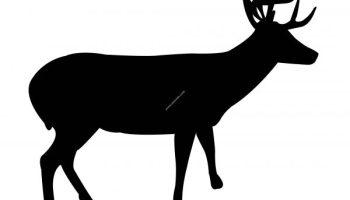 Deer dxf file | Graphic Design Vector