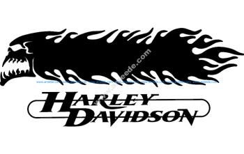 Harley Davidson Skull And flames 3d