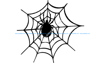 Spider And The Web