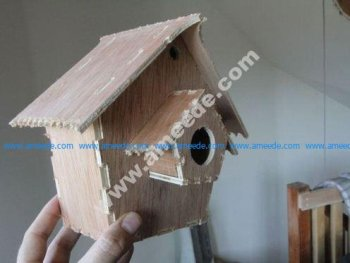 Safe Bird House