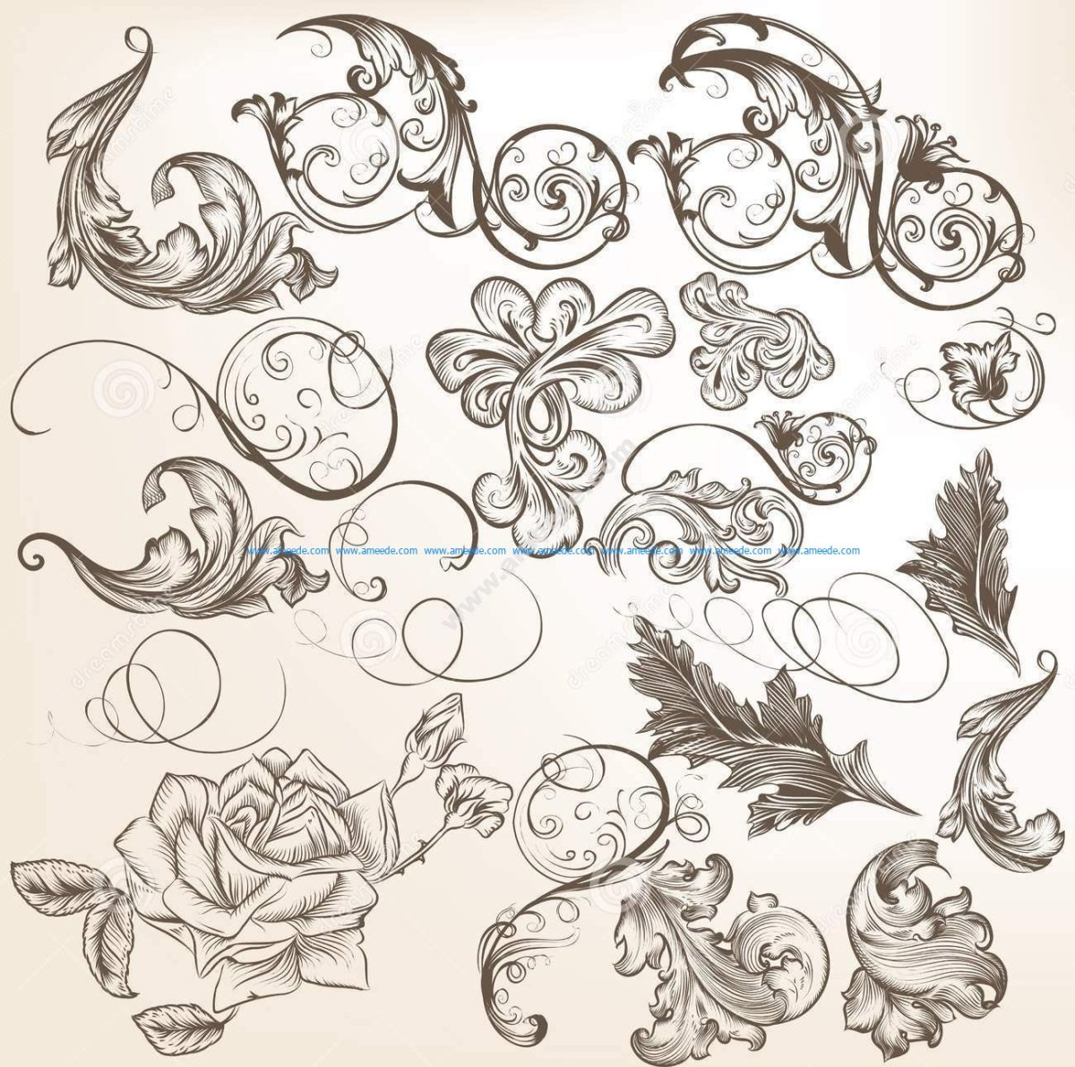 Collection Of Vector Vintage Decorative Swirls