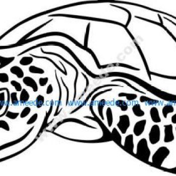 Sea turtle symbol of perseverance