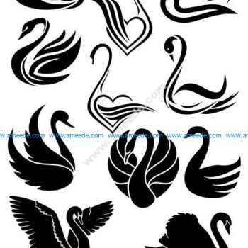 Swans silhouette