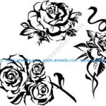 Vector decorative rose