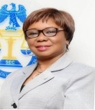 SEC moves to reduce capital market transaction costs