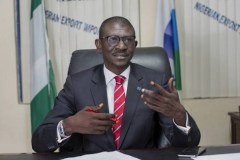 Nigerian Export-Import Bank lists 5 challenges to Non-Oil Export Sector Growth