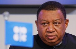 Renewables Not Replacing Fossil Fuels in Coming Decades -Barkindo