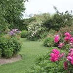 nettoyer son jardin avant départ en vacances