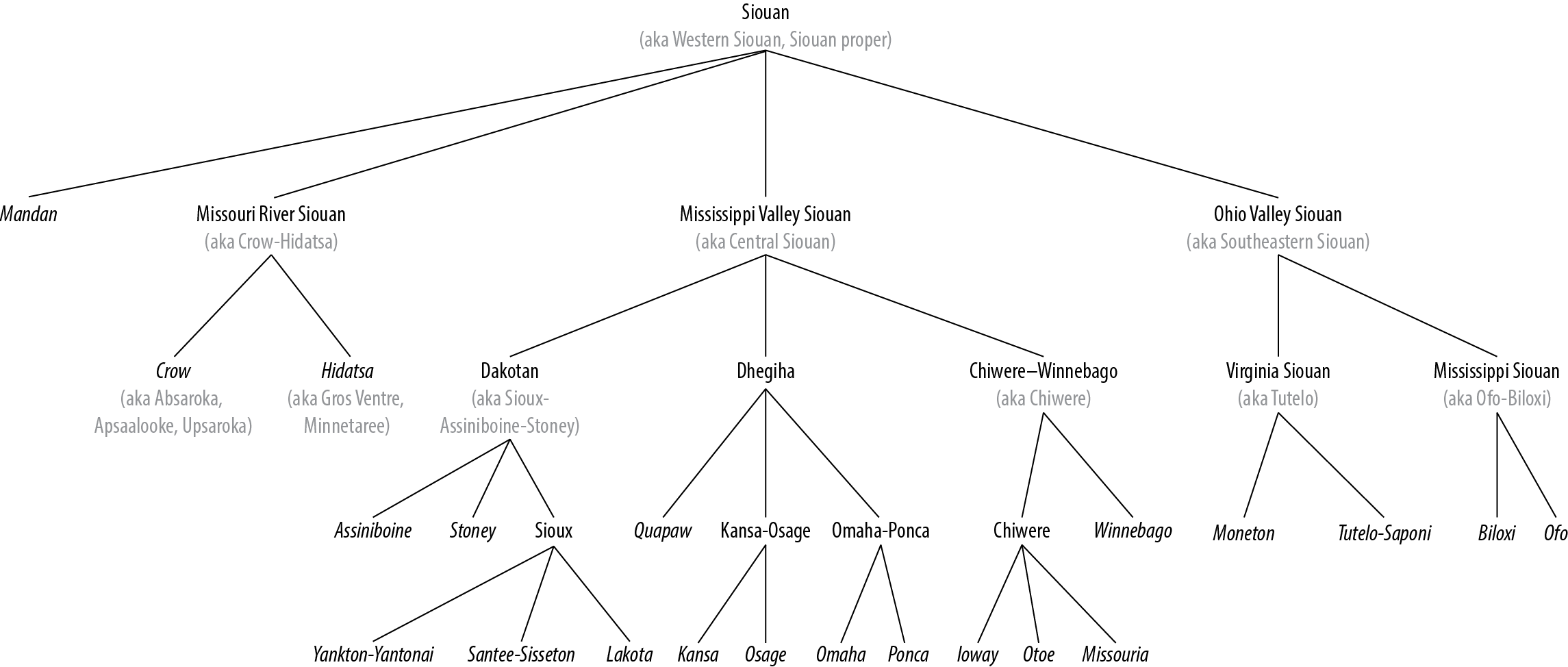 Siouan Language Family Tree