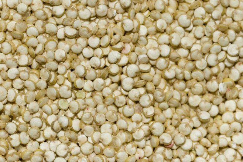 quinoa-processed-grain