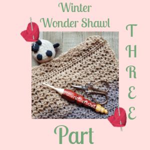 Winter Wonder Shawl Part Three | American Crochet @americancrochet