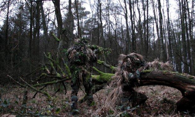 The SPR: AR Guerrilla Sniper Rifle