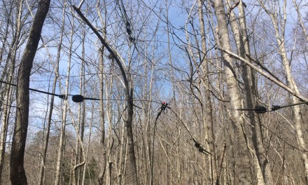 The Jungle Antenna Revisited: Task and Purpose for the Partisan and Prepper