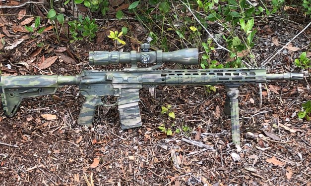 Poor mans sniper rifle upgrade – Palmetto State Armory 2 stage trigger.