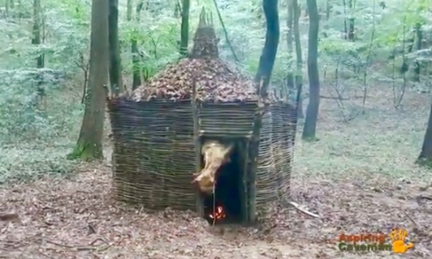 Survival and Bushcraft Shelters by Aspiring Caveman