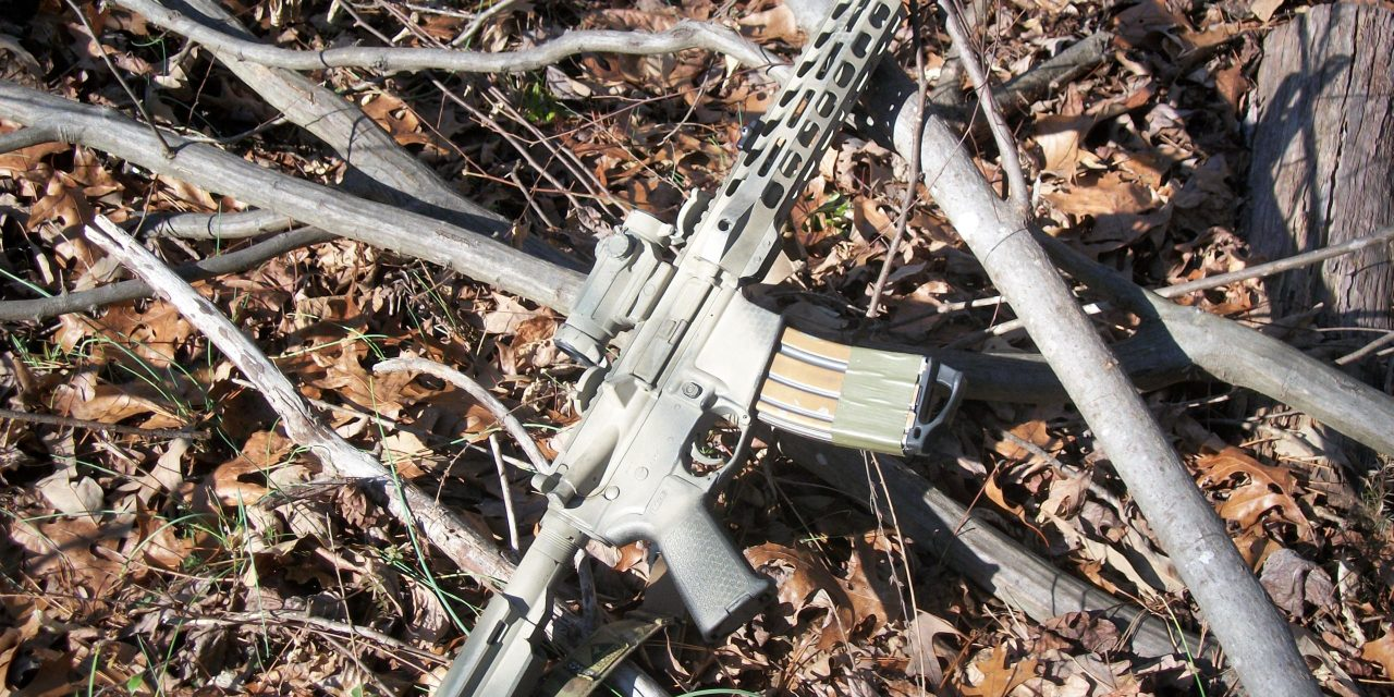 A Potent PDW: Palmetto State Armory's 10.5in Pistol