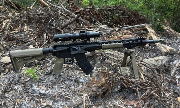 Palmetto State Armory 16″ KS-47 & Primary Arms 1-6x ACSS Scope – 7.62×39 DMR?
