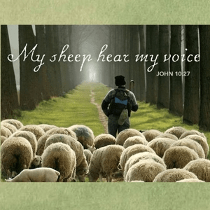 """""""Speak, Lord, for Your Servant Hears."""" 1 Samuel 3:1-10, by Countryslicker"""