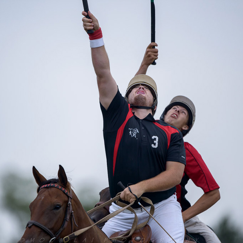 Polocrosse Clubs