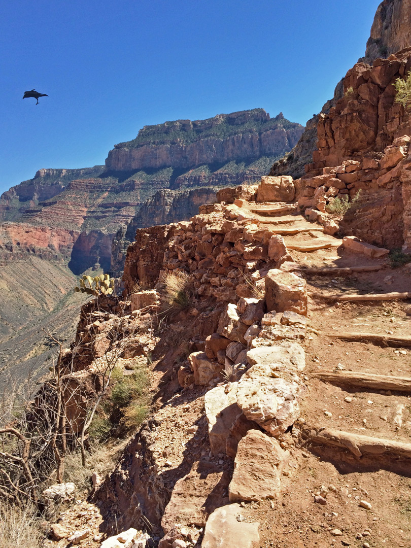 Steps On The Trail South Kaibab Trail Grand Canyon National Park Arizona