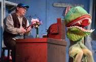 """""""Little Shop of Horrors"""" by Howard Ashman and Alan Menken, at Parkway Playhouse in Burnsville, N.C., through July 16. Pictured: Mike Yow. (Photo by Britt Kaufmann)"""