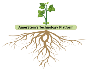 amerstem-technology-products-root-new